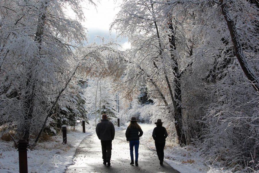 Snowy Days Portfolio by Morgan Williams '18